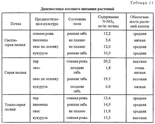 Азотные удобрения (какие): как и где применять для огорода, стоимость, аналоги