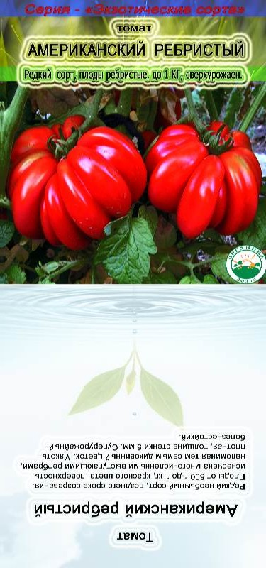 """Помидоры """"американские ребристые"""": описание плодов, урожайность, фото томатов, подверженность вредителям русский фермер"""