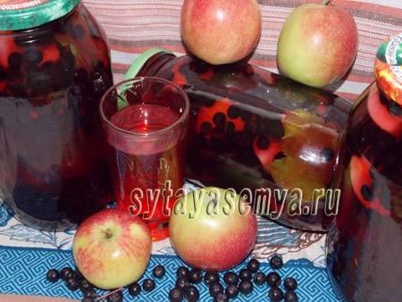 Компот из яблок из черноплодной рябины: 8 рецептов приготовления на зиму