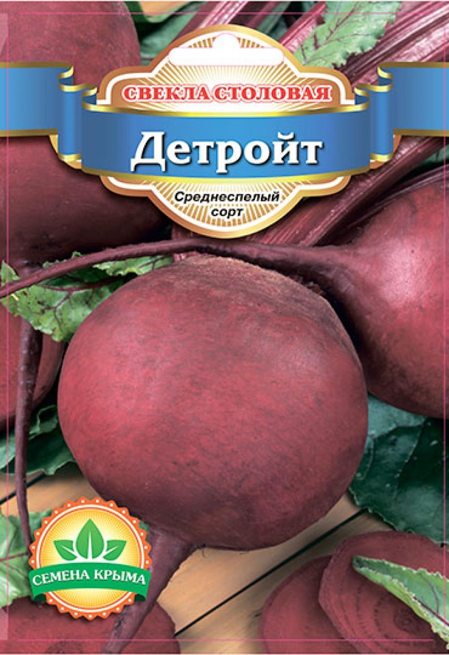 Свекла детройт: описание и выращивание любимого многими сорта