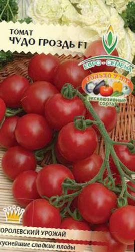 Серия томат «сладкая гроздь»: отзывы, фото, урожайность