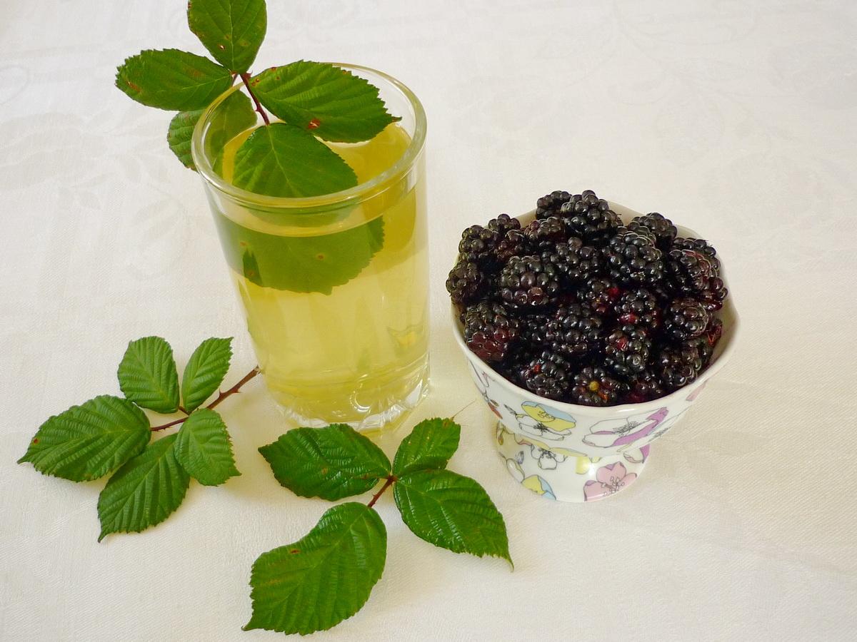 Лист смородины: полезные свойства и противопоказания, рецепты приготовления чая, как сделать лечебный отвар и чем полезен в домашней косметологии