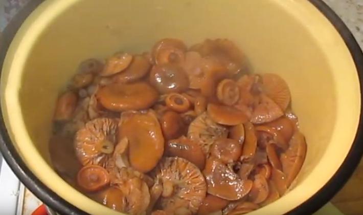 Как засолить рыжики на зиму горячим способом: рецепты приготовления