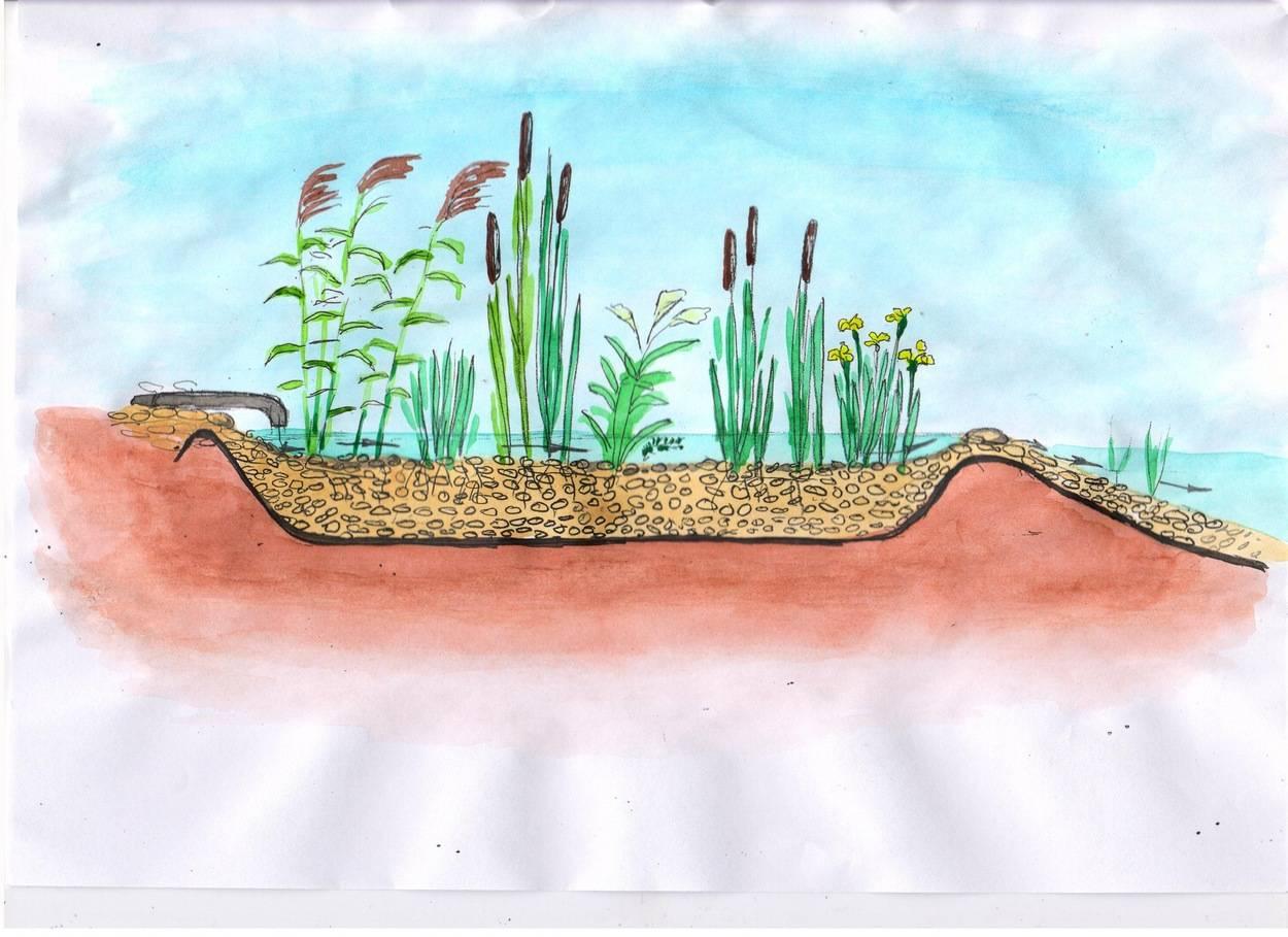 Пруд на даче зимой: как подготовить домашний пластиковый пруд к зиме, чем накрыть декоративный искусственный пруд, что делать на даче для зимовки