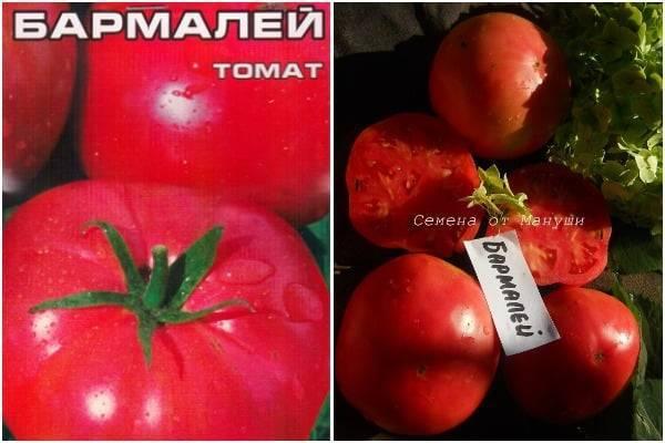 Описание сорта томата драгоценность, его характеристика и урожайность – дачные дела