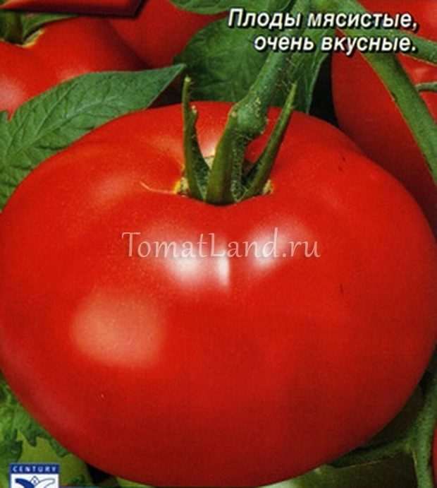 """Томат """"анастасия"""": описание сорта, отзывы, фото, урожайность"""