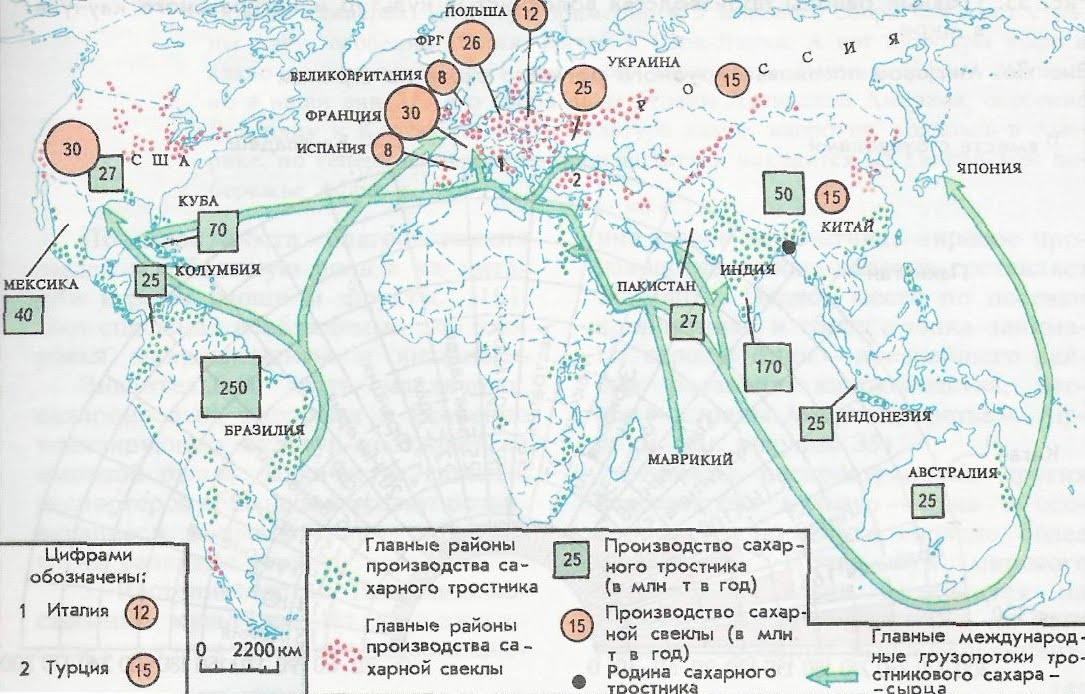Где растет кукуруза и страны-лидеры, подходящие районы выращивания в России