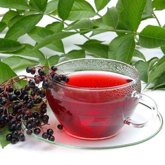 Чай со смородиной: польза и вред, как заваривать