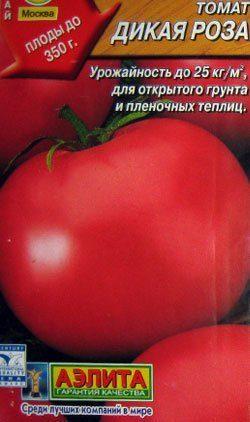 Описание сорта томата вериге, особенности выращивания и ухода - всё про сады