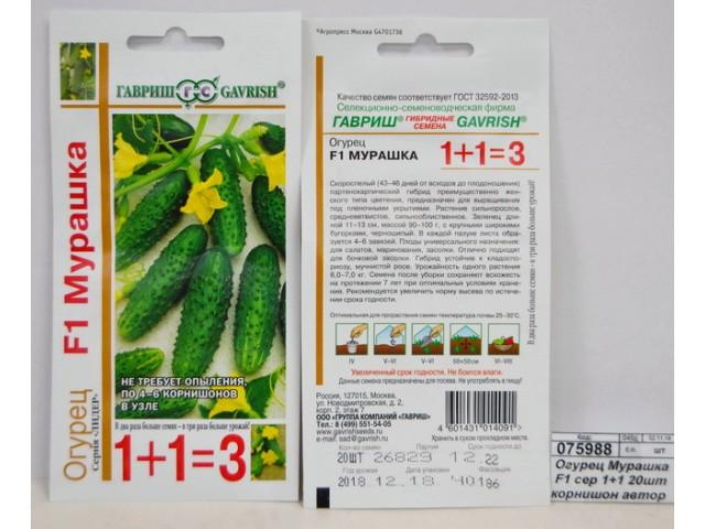 Огурцы мурашка — описание сорта с фото, выращивание, отзывы о семенах и урожае