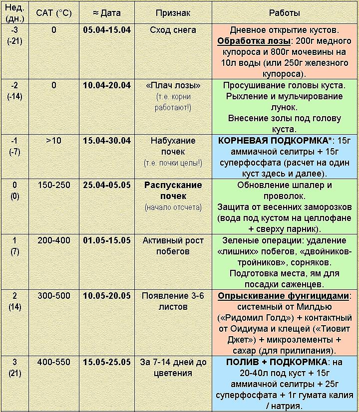 Календарь виноградаря на каждый день, таблица работ на винограднике