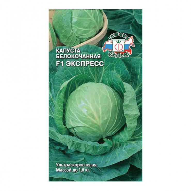 Лучшие сорта капусты с названием, фото и описанием