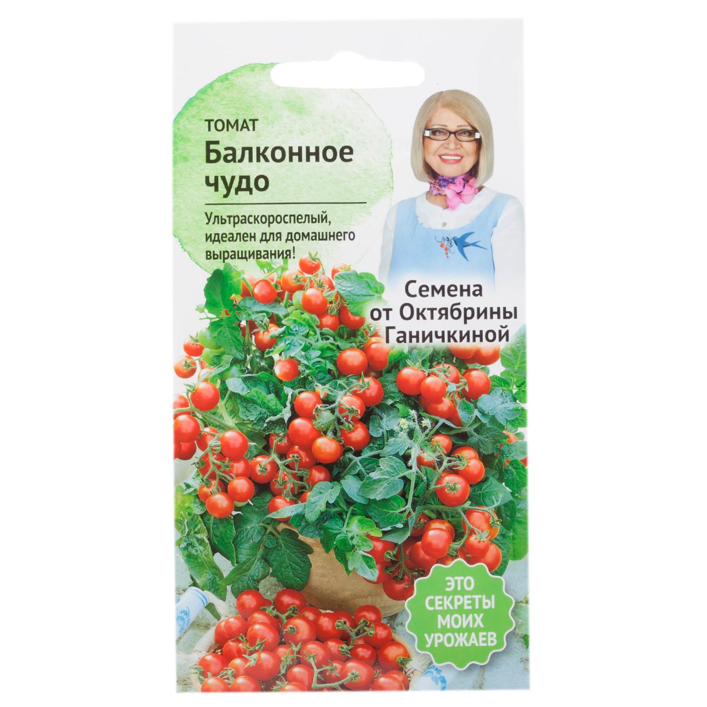 Вырастим томат «балконное чудо»