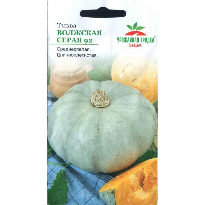 Топ-6 ранних сортов тыквы для скорого урожая