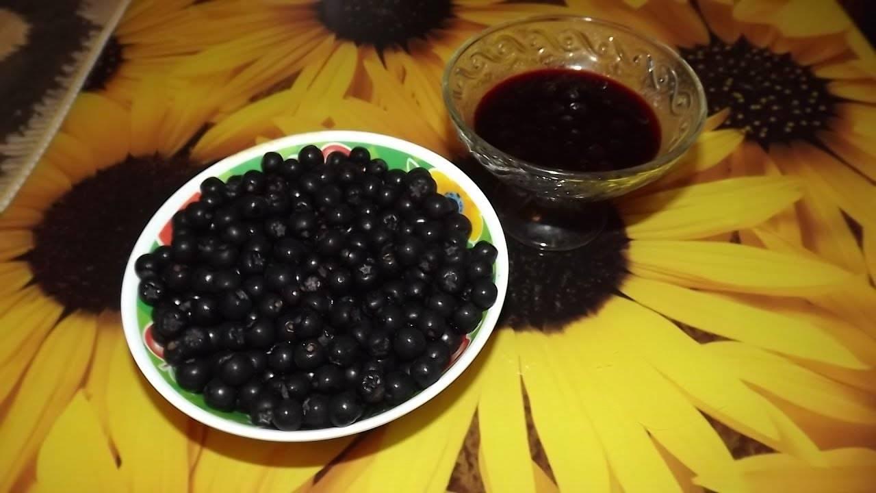Черноплодная рябина: рецепты приготовления, полезные свойства. варенье из черноплодной рябины