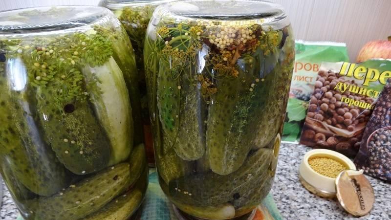 Как заготовить на зиму маринованные огурцы с горчичными зернами и куркумой и правила хранения. как заготовить огурцы с куркумой на зиму