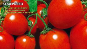 Томат кемеровец: описание и характеристика сорта, фото, отзывы, урожайность