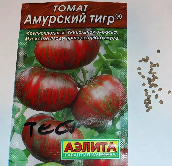 Среднеспелые сорта томатов: подробный перечень разновидностей помидор с описанием урожайности и рекомендациями по выращиванию в теплицах и открытом грунте русский фермер