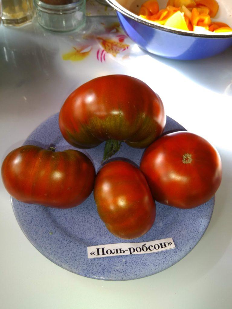 Темноплодный томат «поль робсон» — секреты выращивания, описание сорта