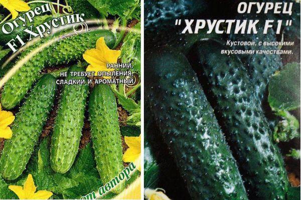 Характеристики и особенности выращивания огурца «фермер f1»