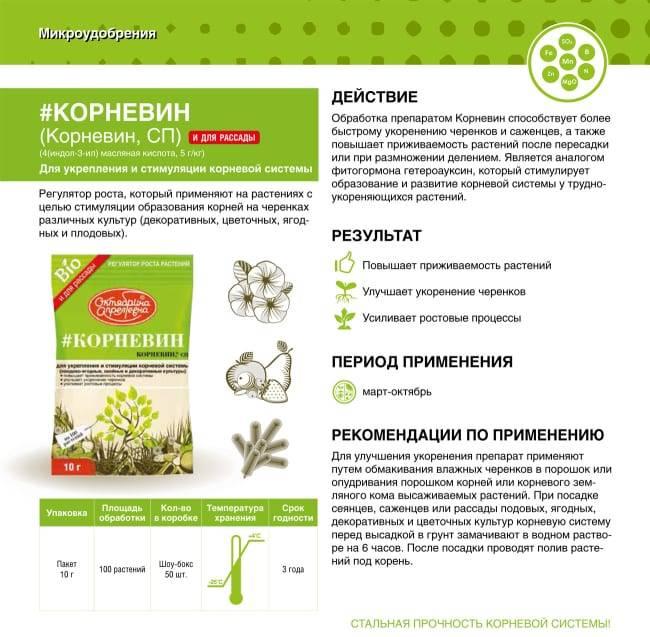 Корневин: инструкция по применению для комнатных растений, деревьев и кустарников