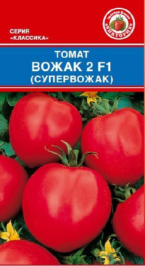 Томат вожак f1: характеристика и описание гибридного сорта с фото