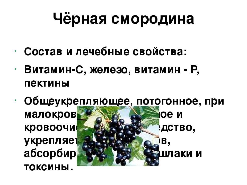 Красная смородина: польза и вред для здоровья | food and health