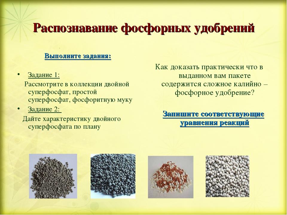 Фосфорные удобрения – применение и виды. их значение в питании растений