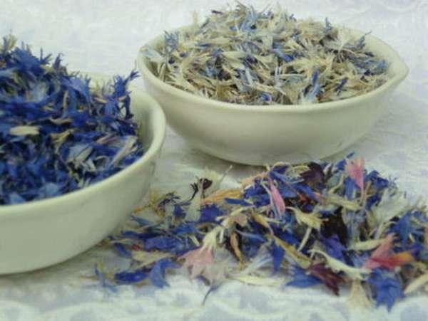 Собирать мелиссу для сушки на зиму: когда лучше срезать листья для чая и других целей – до цветения или после, в какое время и как правильно проводить заготовку? русский фермер
