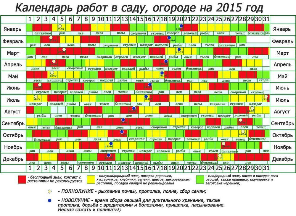 Благоприятные дни для посадки моркови в 2020 году по лунному календарю