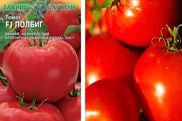 Томат полбиг f1: описание и характеристика сорта, фото, отзывы, урожайность