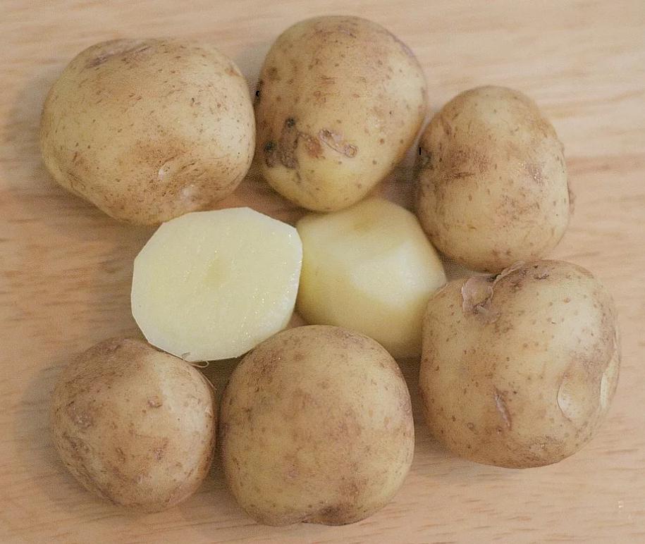 Характеристика картофеля журавушка   вырасти сад!