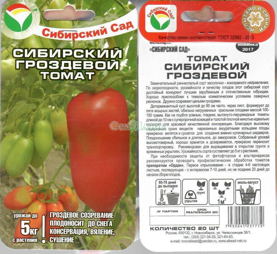 """Томат """"французский гроздевой"""": описание урожайности и другие характеристики сорта, рекомендации по выращиванию и фото плодов-помидоров русский фермер"""