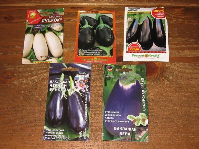 Описание и характеристики сорта баклажана щелкунчик, выращивание и уход