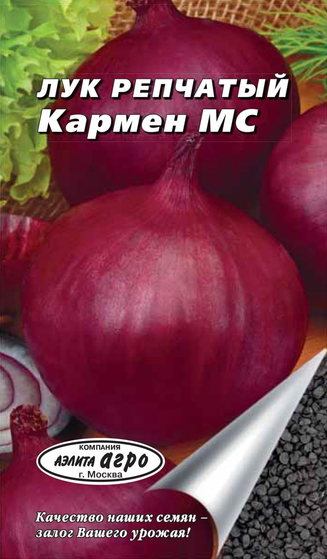 Лук кармен: описание сорта и особенности выращивания