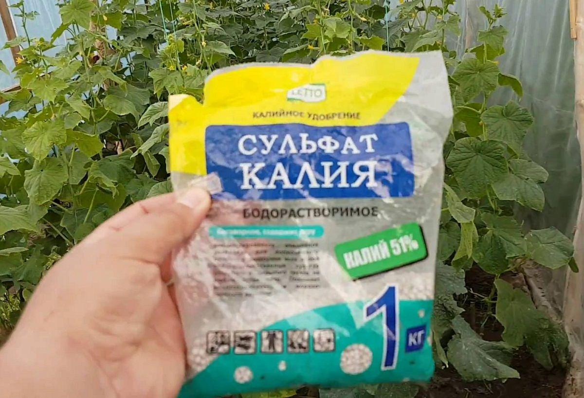 Калийные удобрения: значение для растений, способы внесения