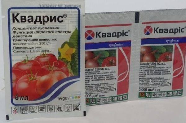 Как правильно применять фалькон для обработки растений