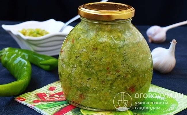 Аджика из зеленых помидоров на зиму «объедение»: 6 лучших рецептов