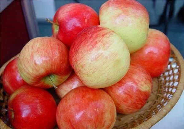 Яблоня сорта беркутовское: описание, посадка и уход, фото, отзывы