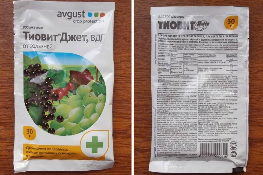 Инструкция по применению препарата шавит фунгицид для винограда