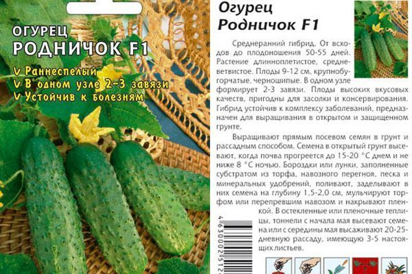 Описание огурца марьина роща и рекомендации по выращиванию сорта