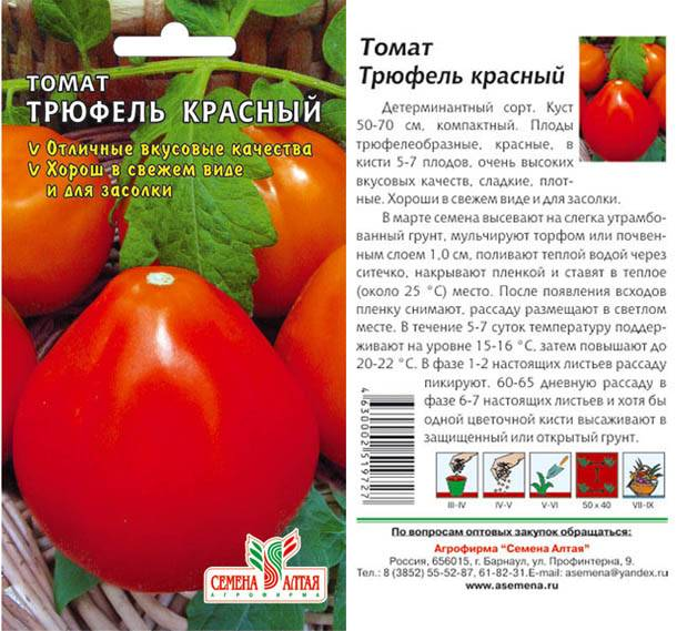 Томат комнатный сюрприз: характеристика и описание сорта, особенности выращивания