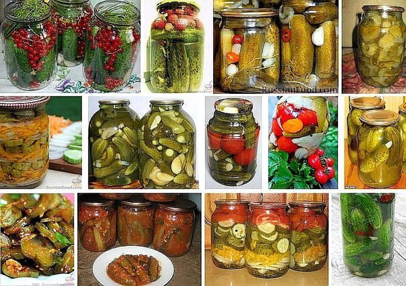 Как правильно хранить редьку в погребе и дома | овощ редька - рецепты, свойства и многое другое.