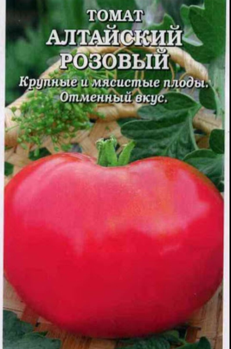 Томат алтайский шедевр: описание сорта, отзывы, фото   tomatland.ru