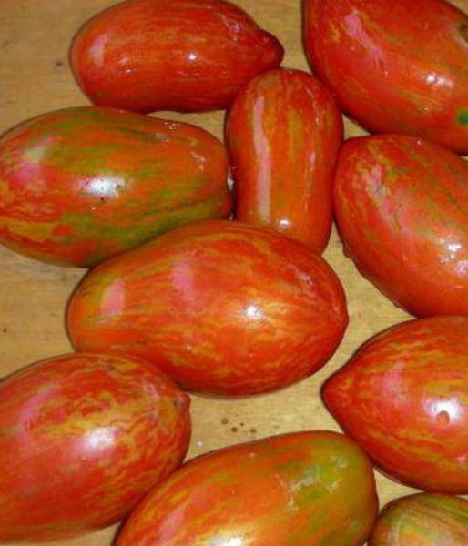 Томат диоранж f1: описание сорта, фото, отзыв, урожайность