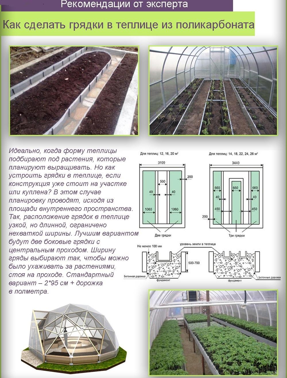 Расстояние между рассадой томатов в теплице 3х6   фазенда рф