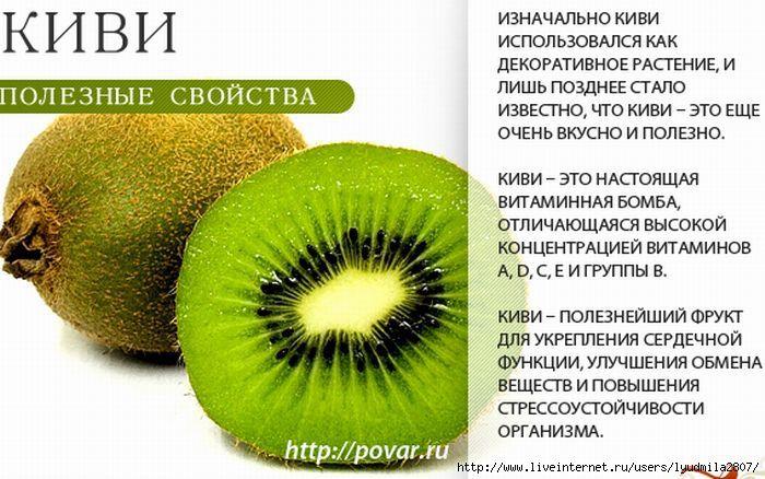 Киви: калорийность, польза и вред для организма