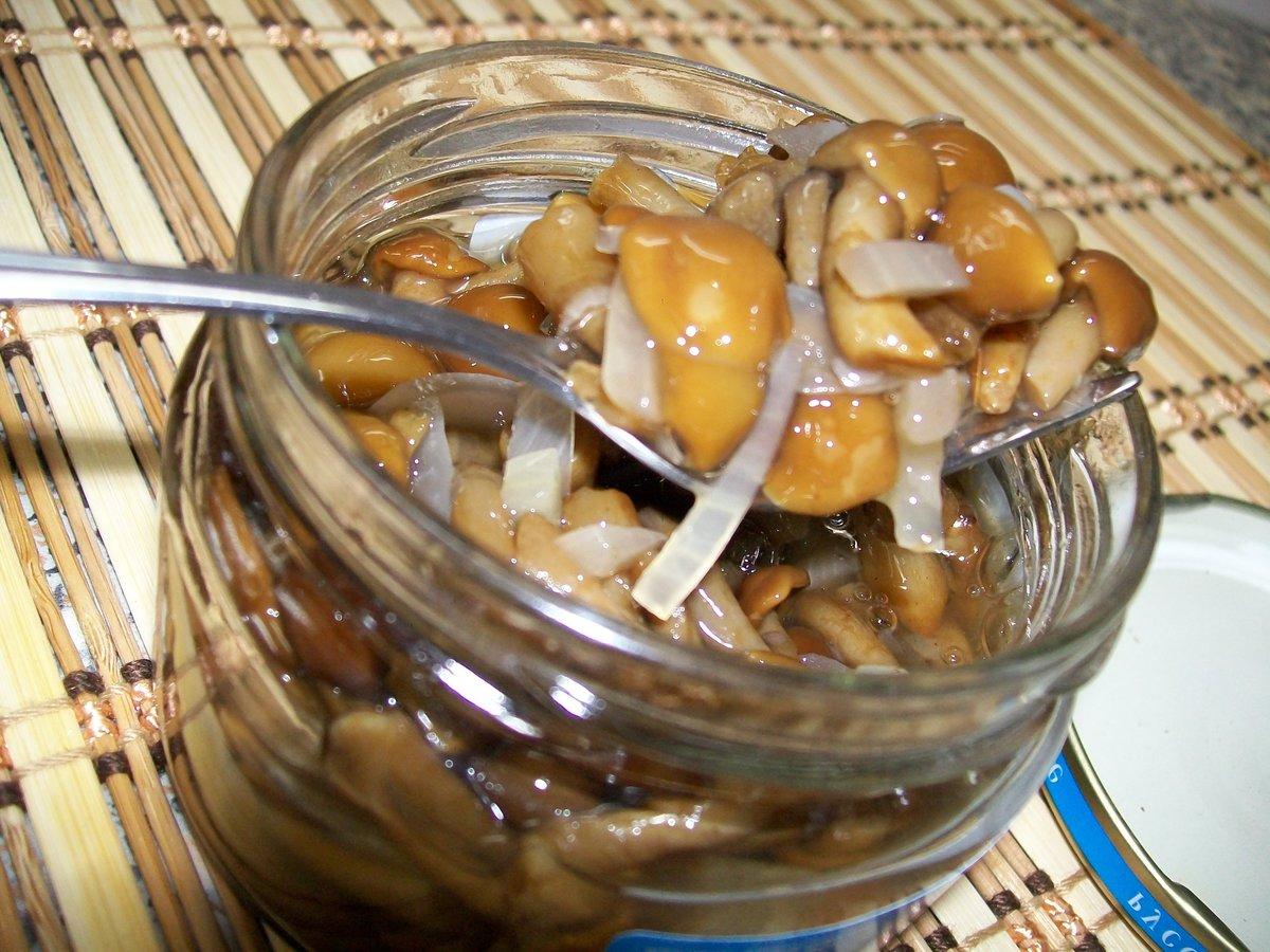 Белые грибы на зиму – простые рецепты заготовки грибов в домашних условиях