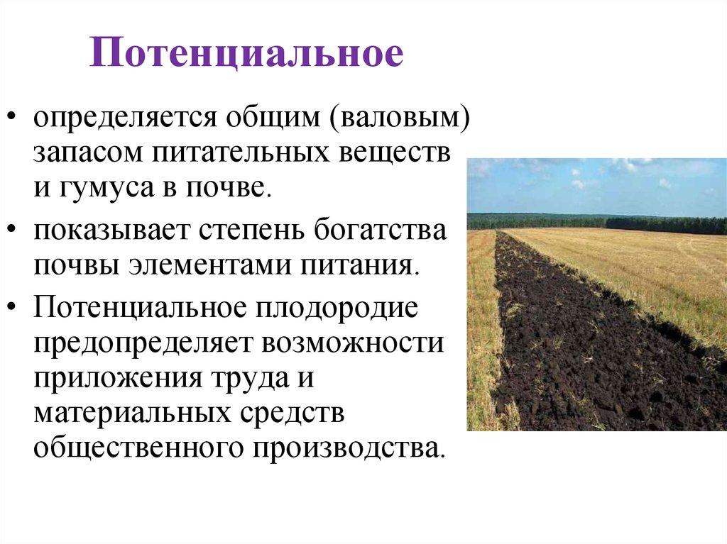 Пять шагов для повышения плодородия почвы