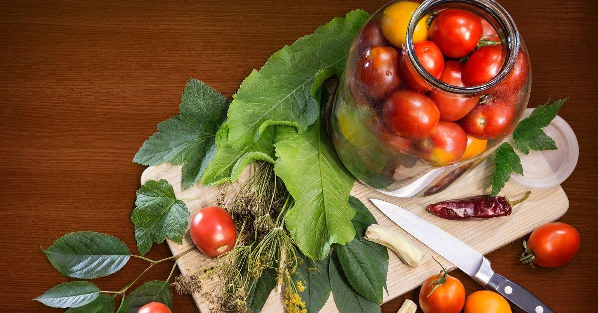 Лучшие сорта помидоров для засолки и консервирования – дачные дела